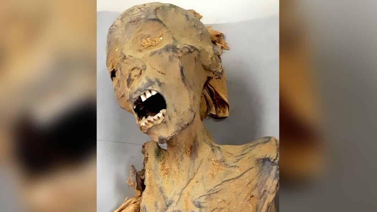 """Novo estudo revela que misteriosa """"múmia que grita"""" pode ter morrido de ataque cardíaco"""